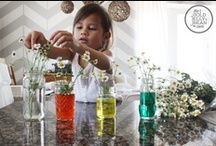 DIY Ideas to Entertain Toddlers / Fun ideas for little girls. / by Meagan Paullin