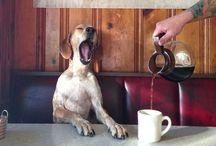 Coffee / by Kelly Douglas