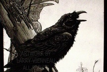 Quoth the Raven, Nevermore / by Victoria Carlson