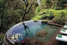 Landscape + Backyards / by Rina Vela Interior Design