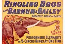 Circus / by Marlee Robertson Kitchel