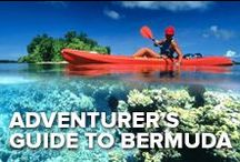 An Adventurer's Guide to Bermuda / The animals aren't the only ones getting wild in Bermuda. Bermuda is filled with adventure activities. Explore the wild side of Bermuda!