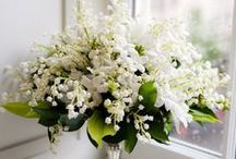 Bouquets: White and Ivory / White and ivory bridal bouquets. #wedding #weddingbouquet #bridalbouquet #whitebouquet #whitebridalbouquet #whiteweddingbouquet