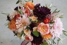 Bouquets: Peach and Coral / Peach and coral bridal bouquets. #wedding #weddingbouquet #bridalbouquet #peachbouquet #peachbridalbouquet #peachweddingbouquet #coralbouquet #coralbridalbouquet #coralweddingbouquet