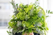 Bouquets: Green and Botanical / Green and botanical bridal bouquets. #wedding #weddingbouquet #bridalbouquet #greenwedding #botanicalwedding #greenbouquet #greenbridalbouquet #greenweddingbouquet #botanicalwedding #botanicalbouquet #botanicalbridalbouquet #botanicalweddingbouquet