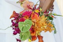 Bouquets: Tropical / Bridal bouquets using tropical florals. #wedding #weddingbouquet #bridalbouquet #tropicalbouquet #tropicalbridalbouquet #tropicalweddingbouquet