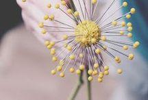 Foam Flowers / by MakeitFunCrafts