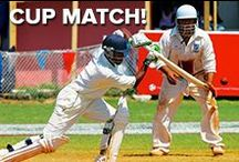 Cup Match! / Based around a fierce cricket rivalry, Cup Match has expanded into an island-wide party that is the highlight of every summer in Bermuda.