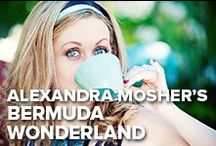Alexandra's Wonderland / There's a little bit of Bermuda in everything jeweler Alexandra Mosher makes – often literally. Her Bermuda Reef collection features the island's legendary pink coral sand fused into beautiful earrings, rings and bracelets. Check out more at http://www.gotobermuda.com/blog/BERMUDA-GEMS--Alexandra-Mosher-Studio-Jewelry/