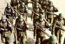 Armia polska 1939