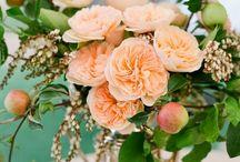 Peach & Coral Wedding Ideas