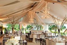 //wedding / by Talia Connor