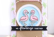 Cards - Flamingo / Handmade cards with Flamingos and fun flamingo sentiments!