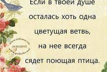 Цитаты ,умные слова,русский язык...