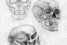 ༺Анатомия༻ / Здесь будут уроки по рисованию человеческого тела, глаз , хвостов, хвостов, головы , одежды и тд