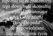 Dawid Kwiatkowski ✌