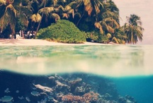 Travel | Ocean Paradise / by Schuyler Clement