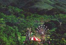 circus / acrobatics | aerials | big top love