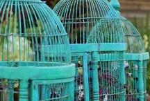Turquoise passion