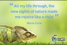 Great Green Quotes / Inspiring words of wisdom that will help motivate you to protect our environment.