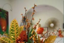 Fall{ish} / by Linda Lime in the Coconut