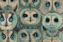 Passion Owl