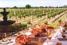 Vineyard Wedding Ideas / Wine Country Weddings are a special way to celebrate your day. From a perfect ceremony to beautiful wine and vineyard inspired reception, here are some elegant, yet rustic inspirations.