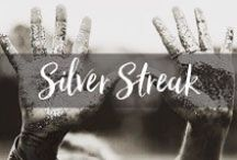 Silver Streak / Find your Silver Lining. / by Case-Mate