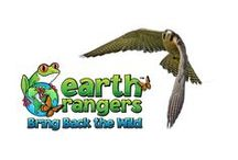 Peregrine Falcons / Did you know peregrine falcons have the fastest dive? Discover more fun facts about peregrine falcons and find engaging activities for kids to learn about and help protect these amazing birds of prey.    Start your Bring Back the Wild campaign today!  https://www.earthrangers.com/bbtw/en