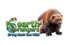 Wolverines / Discover amazing facts about the wolverine and join us in our mission to help protect them https://www.earthrangers.com/bbtw/en/?banimal=36