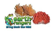 Cold-Water Coral / Discover fun facts about cold-water coral and join us in our mission to help protect them https://www.earthrangers.com/bbtw/en/?banimal=37