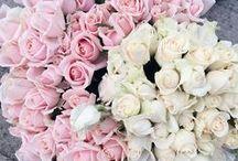 Flowers, flowers, flowers! / Fresh flowers are so beautiful