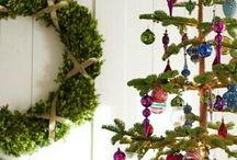 Christmas Trees / This is a shared board by Roswitha Noetzel and Morena Macchia about all different kinds of Christmas trees to inspire you to find a tree that symbolises your own magical and unique family Christmas!