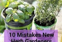 Herb Garden DIY / Collection of brilliant and creative DIY Herb Garden Ideas and Tips