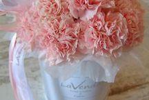 flowerbox / #flowerbox flower box #kwiatywpudełku #lavendaflowerbox #lavendasuwalki