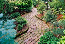 Garden: Paths / by Cathy Mohn
