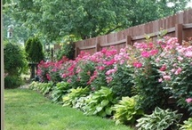 Yards and Gardens