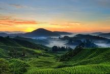 *my malaysian adventure*
