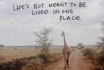 Travel / by Betsy Thibado