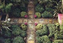The bigger garden