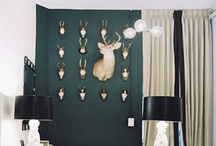 Taxidermy in Interiors