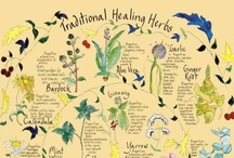 herbals and remedies / by Connie Parma