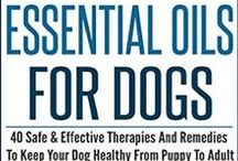 Dog Health and Nutrition / Overall health and nutrition board for your beautiful pooch.