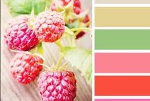 colour, colour, everywhere / by kelli :)