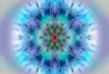 insight and meditation / .