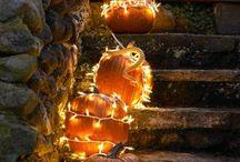 halloween fun  / by Tawni Herron
