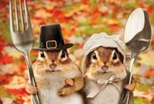 Gobble Gobble / All things Thanksgiving related !