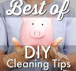 HOME ⚱  | Cleaning / Explore tips, ideas, recipes, shortcuts, natural alternatives, DIY hacks for living a clean life on a budget.  Request a copy of our popular new Ebook - 22 TRIED & TRUE cleaning product recipes using simple ingredients from home - http://bit.ly/2agWHPK