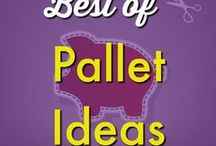DIY/Crafts ✄ | Pallet Ideas and Repurposing and Reusing Pallets - DIY Pallet Projects / Pallets are all the rage! DIY Pallet projects, outdoor furniture ideas for the whole family, and frugal applications for your floors, bedrooms and more. Find unique ways to repurpose and reuse pallets for a budget friendly way to redesign your home and yard! Request a copy of our popular new ebook filled with 22 TRIED & TRUE cleaning product recipes using simple ingredients from home -------->http://bit.ly/2agWHPK