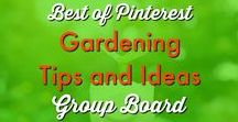 Garden ✿  | + BEST Gardening Tips and Ideas on Pinterest! Group Board / Everything you would want to know about gardening and garden ideas from growing luscious fruits and vibrant veggies to landscaping, outdoor decor and how to have a green thumb when you don't have one! If it is related to gardening, it is found here! To join this group board, please send a message to info@thethriftycouple.com with name of Pinterest Board in the subject line along with your Pinterest email address in the body of the email. Thanks! 22 cleaning product recipes http://bit.ly/2agWHPK